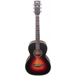 Ibanez AN60-BSM Brown Sunburst Matt
